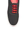 Colt Low Top Canvas Sneakers